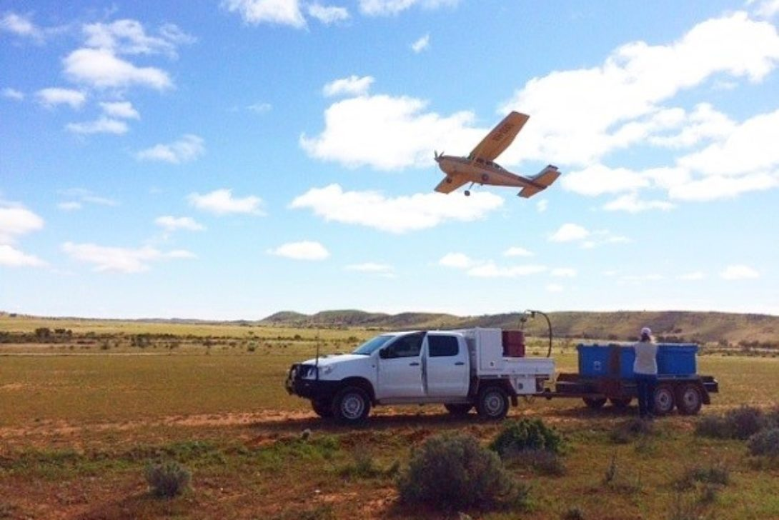 Aerial baiting programs, NSW Western Division. By Grant Davies